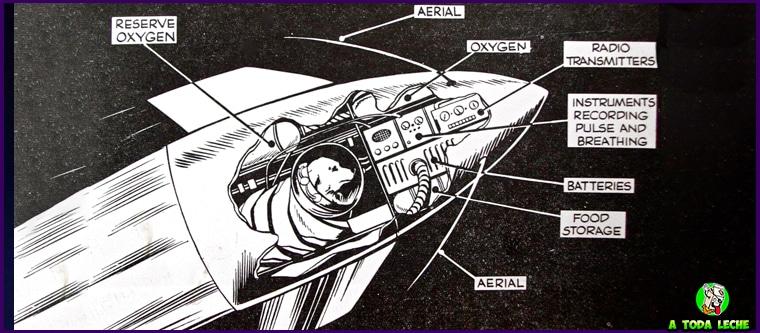 el primer astronauta la perra laika