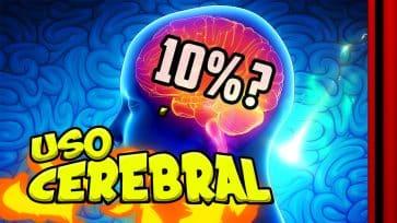 ¿Utilizamos en 10% d...